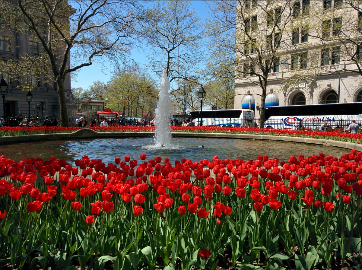 Bowling Green: First in New York