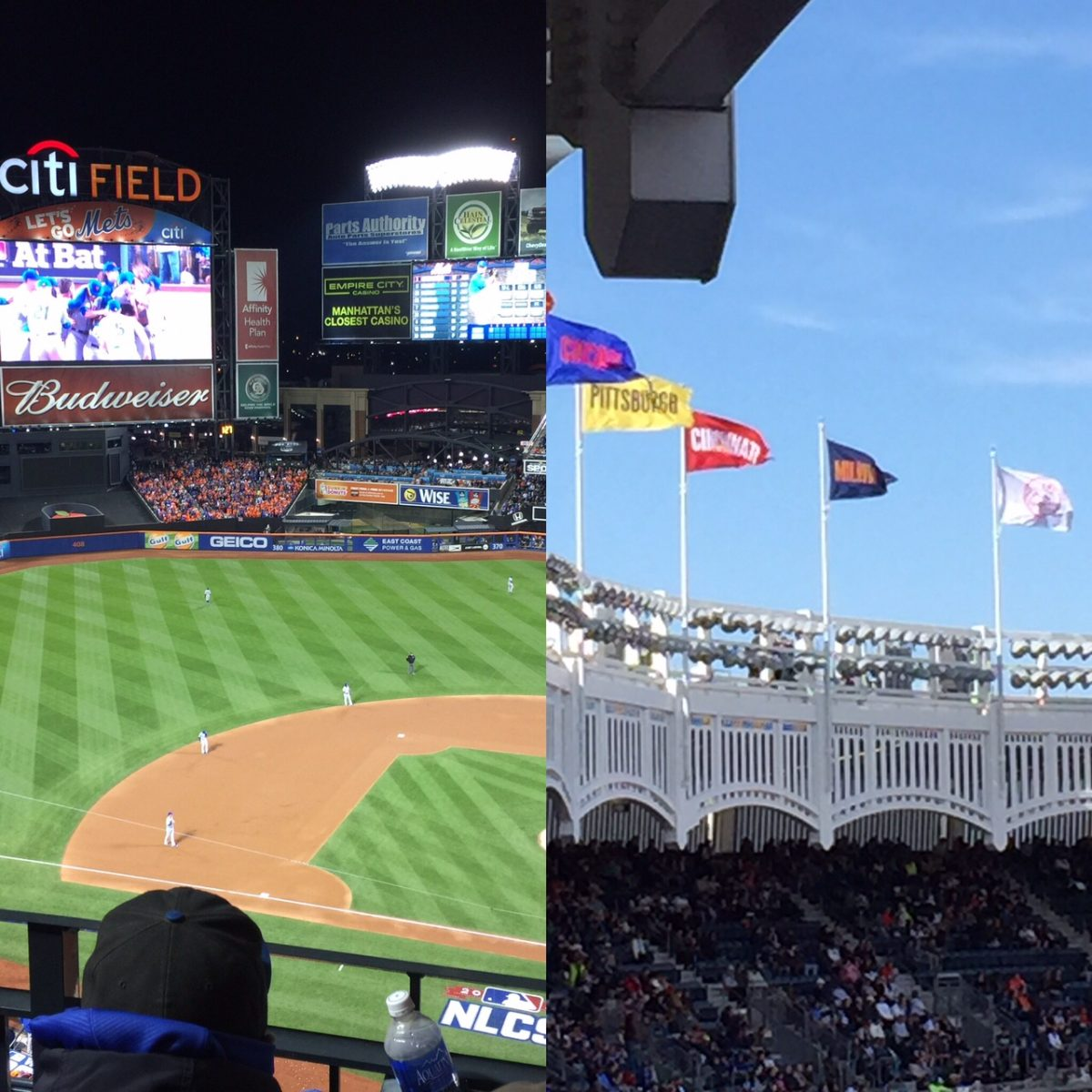 Professional Baseball in the City